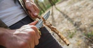 man whittling a stick of wood